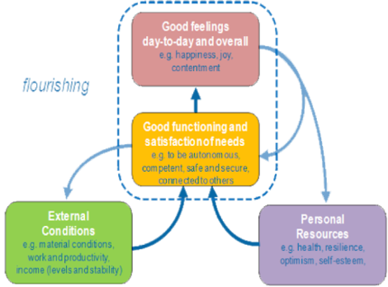 Diagram of external and personal resources leading to good functioning and satisfaction of needs finally leading to good feelings day-to-day and overall
